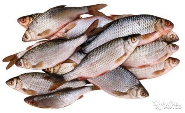 Джамшут помогают к чему снится рыба на рынке засоленая несвежая производства